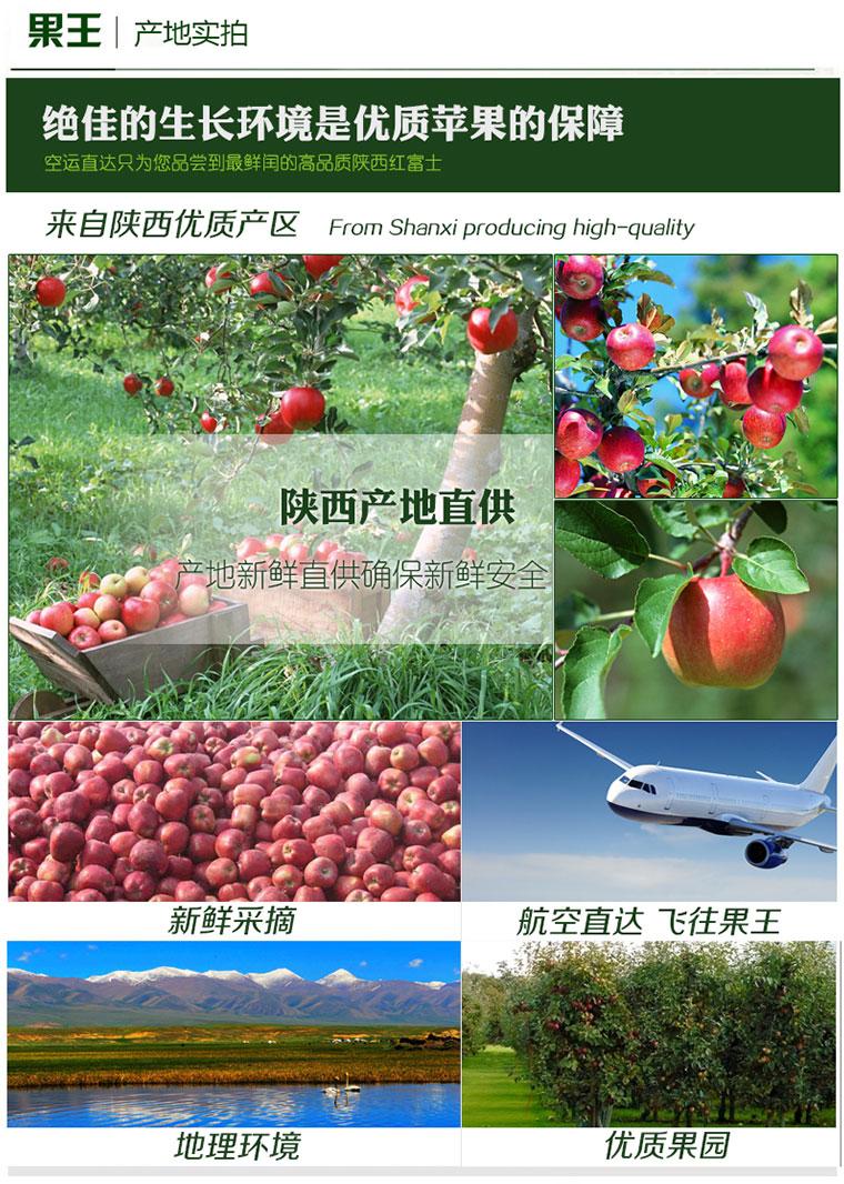 果王佳园 苹果, 陕西西安红富士苹果分享装20 22个 5.5kg 赠美国进口红心葡萄柚2个 东方购物,东方CJ
