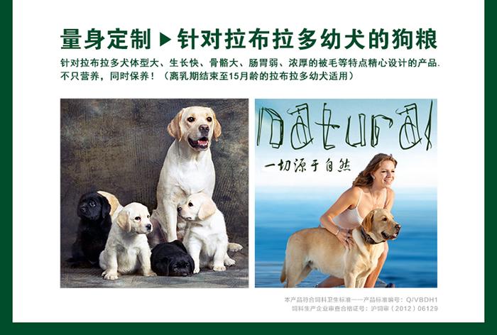 拉布拉多幼犬吃什么狗粮论坛_拉布拉多狗粮推荐_拉布拉多狗粮价格